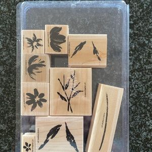 Stampin Up Watercolor Garden II Stamp Set
